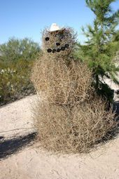 Snowman Tumbleweed